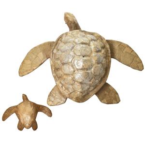 Baby Turtle $99         Adult Turtle $295