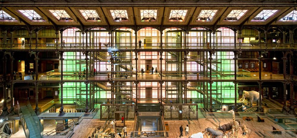 Grande Galerie De L'Évolution, Muséum National D'Histoire Naturelle, Paris