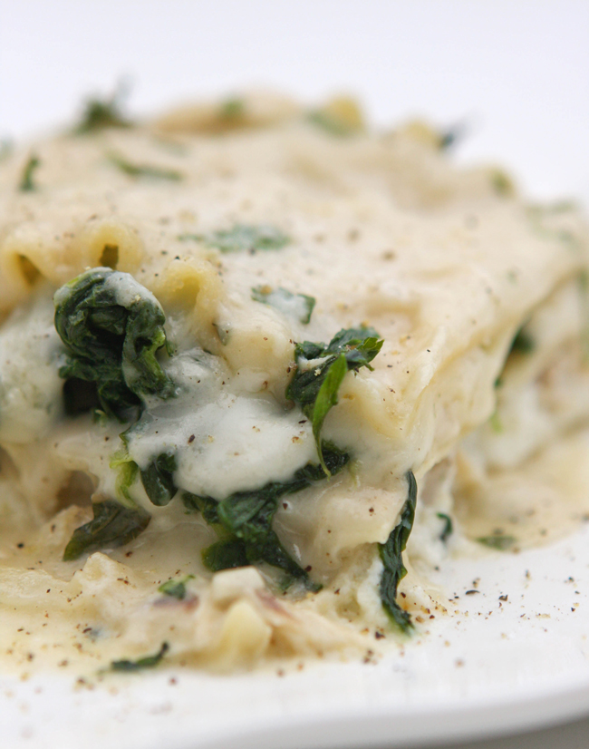 White Chicken Lasagna Recipe — Pip and Ebby - easy, delicious recipes!