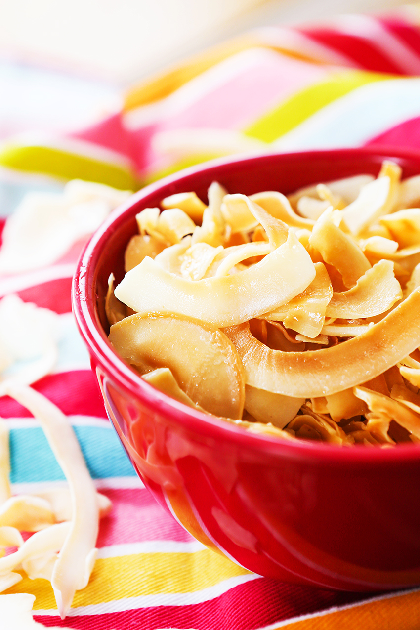 Salty Toasted Coconut Chips Recipe