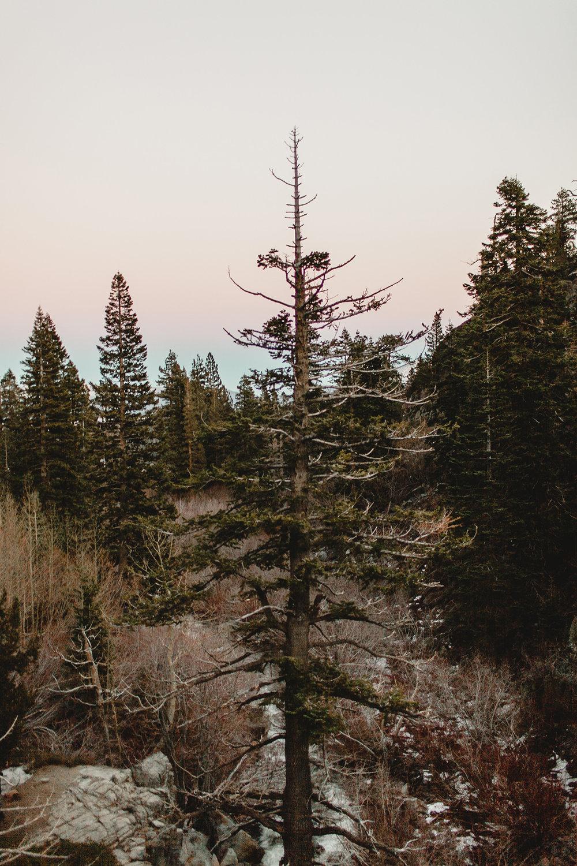 lake_tahoe_-7.jpg
