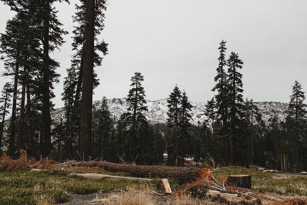 lake_tahoe_-9.jpg