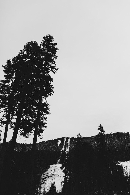 lake_tahoe_-11.jpg