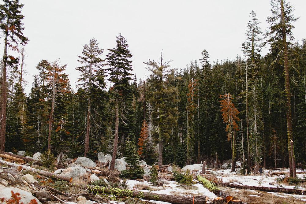 lake_tahoe_-15.jpg