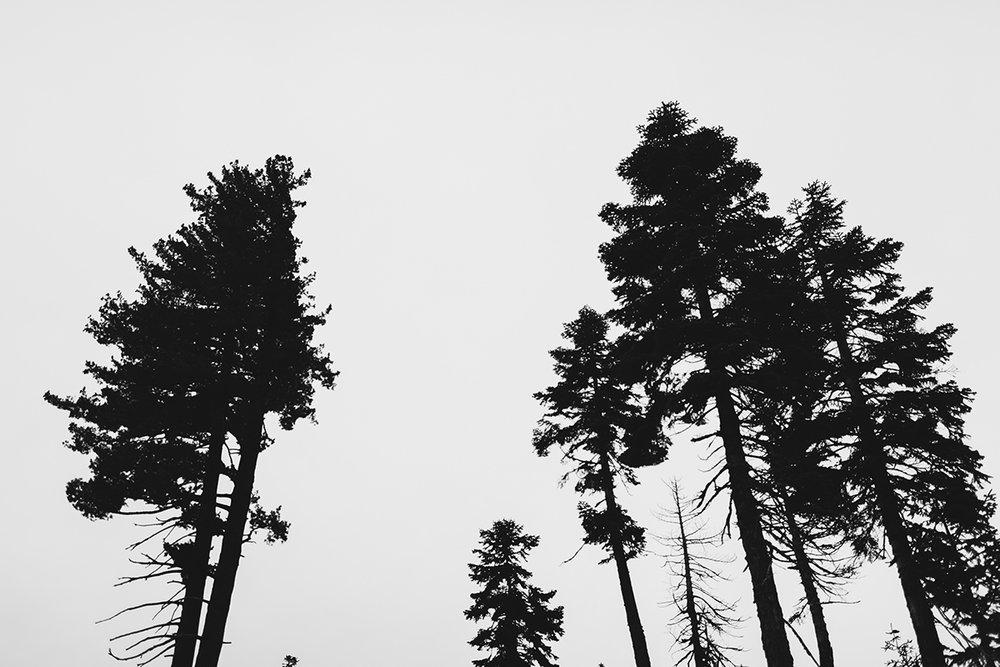 lake_tahoe_-27.jpg