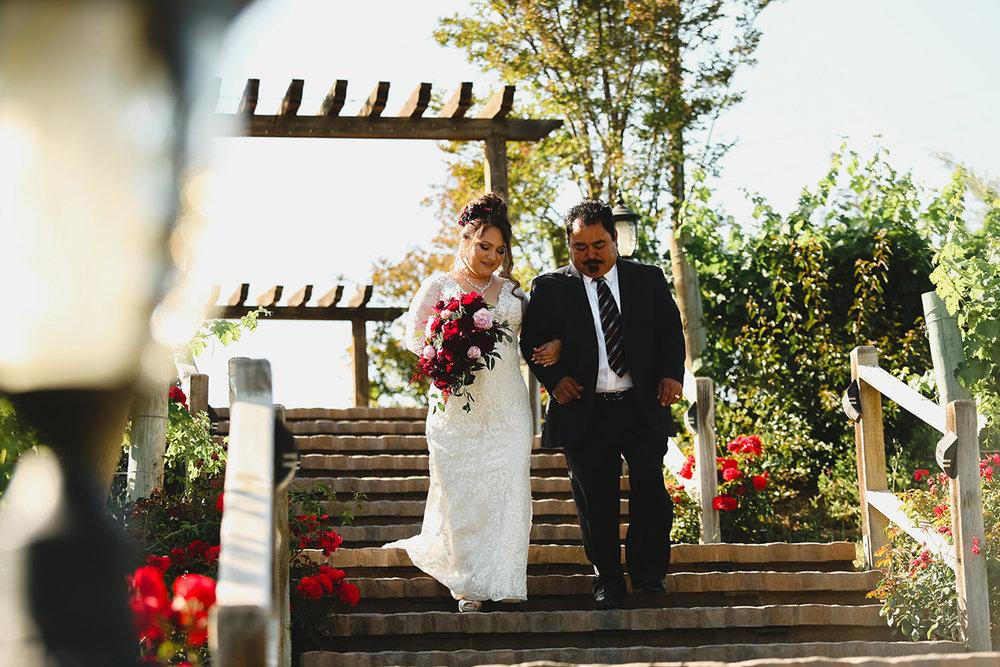 jas_theo_lakeoak_meadows_wedding_-042.jpg