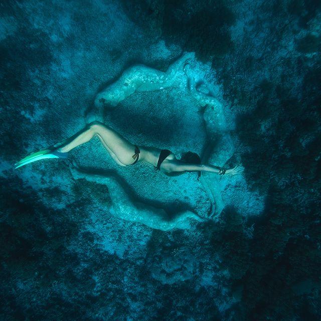 🖤🖤🖤 . . . For all bikini lovers out there-  20% off all items @ nunuibali.com till the end of tomorrow (14.2.) use VAL20 at the checkout 🤗 @miss_tyns wearing our bora bora top&bottom in bronze velvet&black 📸 @iamjantrnka @nunuibali  #bikini #underwater #cliff #bali #island #vacation #lifeisgood #love #gili #freediving