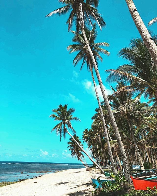 P A R A D I S E 🌴☀️ . . . Still looking for perfect xmas gift? We offer great sale for next 24hrs. Check our stories for coupon 💫🤗 #Island #philippines #vacation #sunny #sand #tan #bikini #takemethere #boat #beach @barboracheco @nunuibali