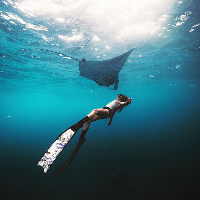 G R A C E F U L 🌊 . . . #underwater #bali #nusapenida #manta #freediving #travel #bikini #beach #wetsuit #eco @jesseas_journal rocking our reversible spring suit made from eco friendly materials ♻️ 📸 @7highseas @nunuibali