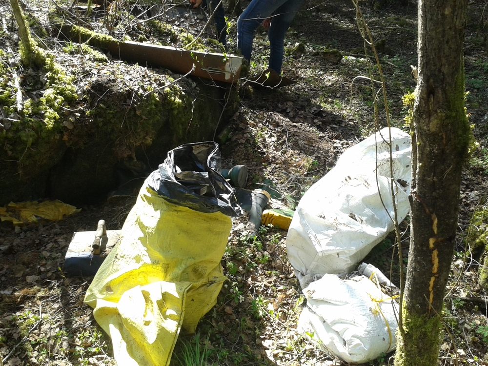 Waste in the forest before cleaning in 2015.