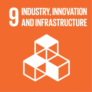 Green Key and the 17 Sustainable Development Goals: SDG #9