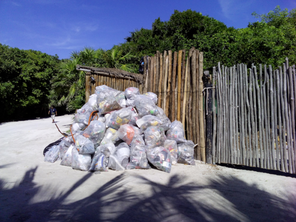 Coastal Cleaning Day arranged by the Hotel & Beach Club Villa Pescadores, Mexico