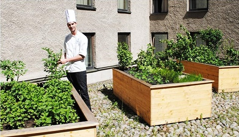 Sheraton Stockholm Hotel - Sourcing sustainable food