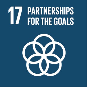 Green Key and the 17 Sustainable Development Goals: SDG #17