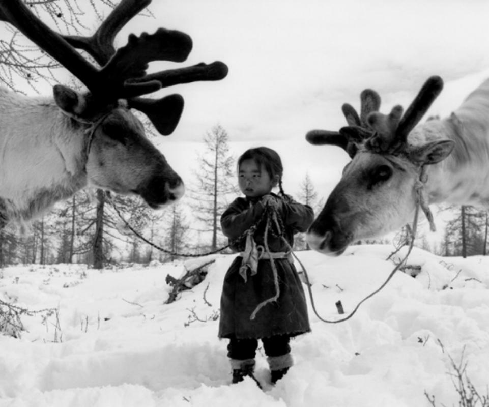 1-zuun-taiga-mongolia-2007.png