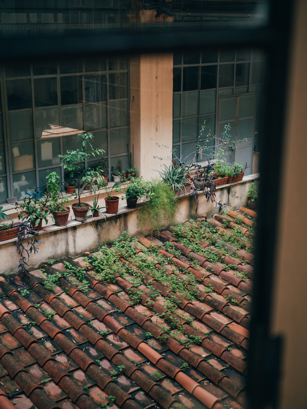 adriancanofranco_airbnb_rome_01