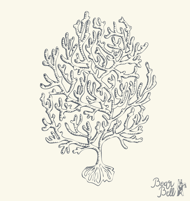 Bear-Bell_Illustration_Coral.png