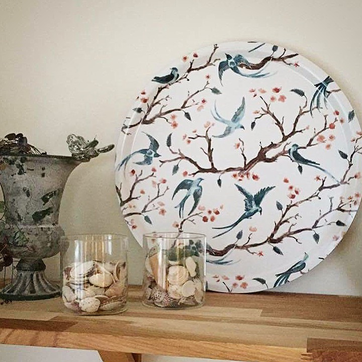 Wings & Tails Tray -