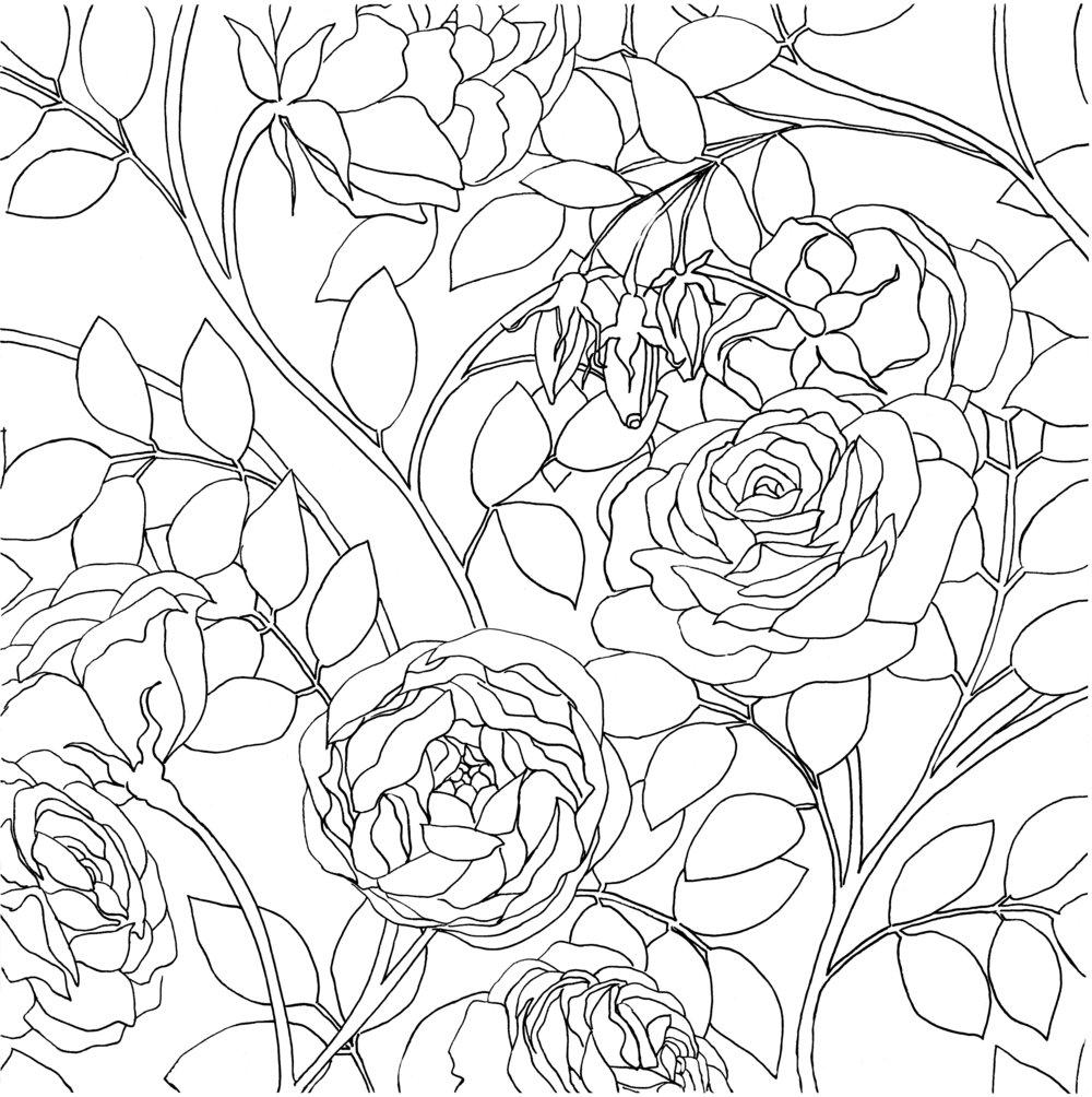 Roses1.jpeg