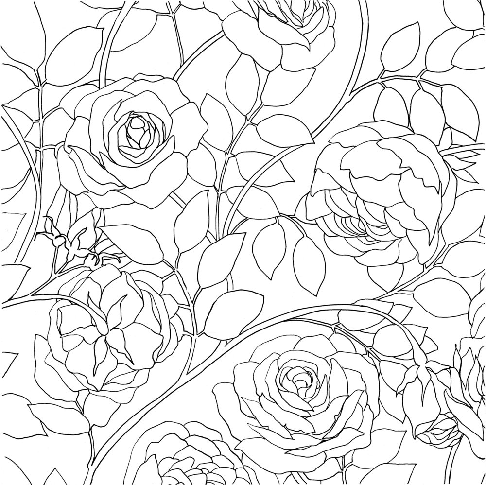 Roses2.jpeg