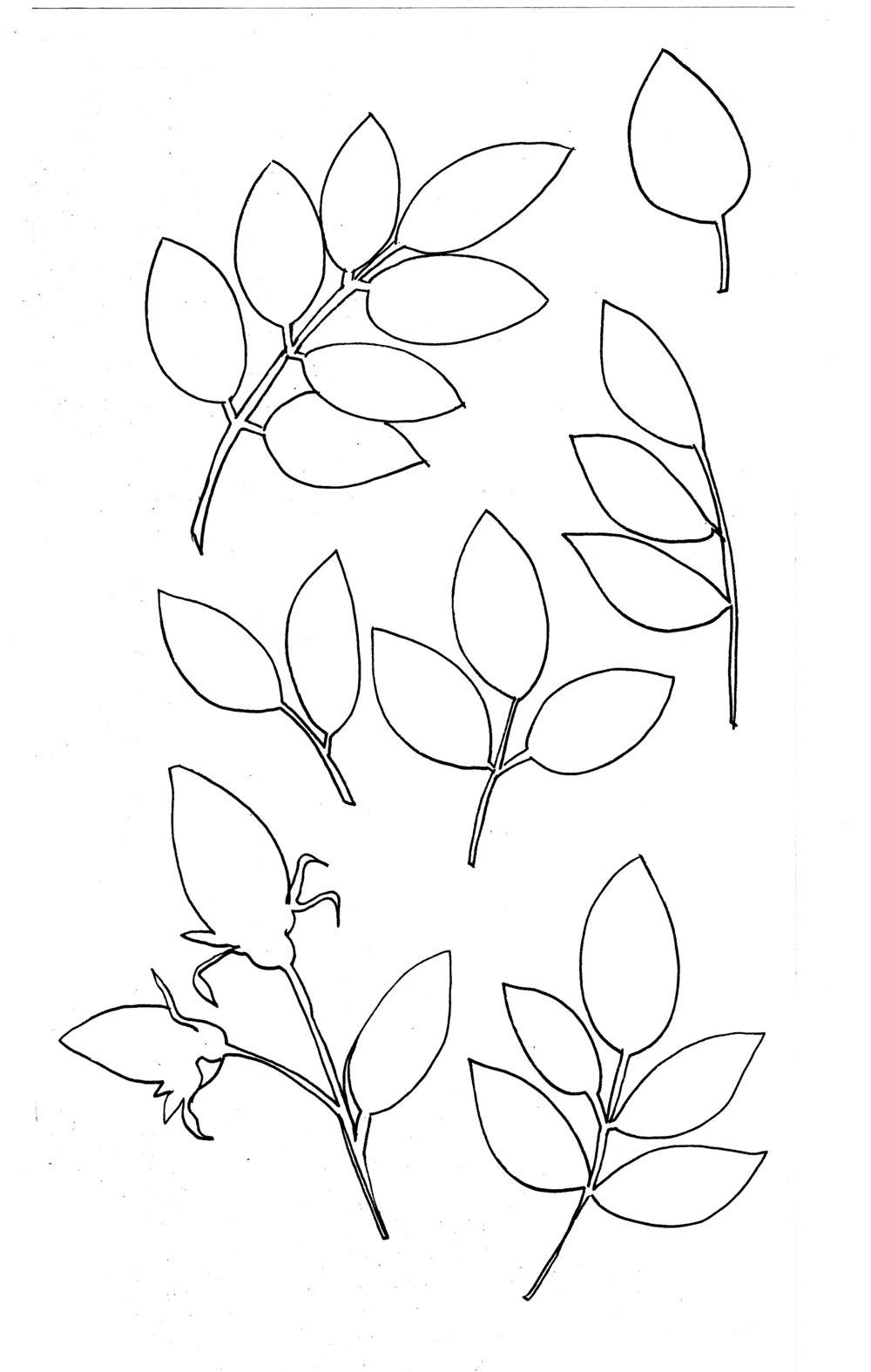 Roses3.jpeg