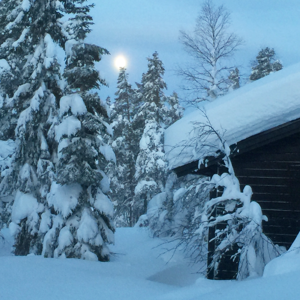Shuffling through the deepest snow I've ever experienced, getting stuck with our car while skiing with the family in Sälen.