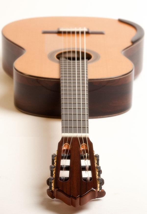 Guitar-1251_600.jpg
