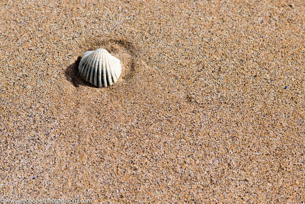 Dornoch Beach