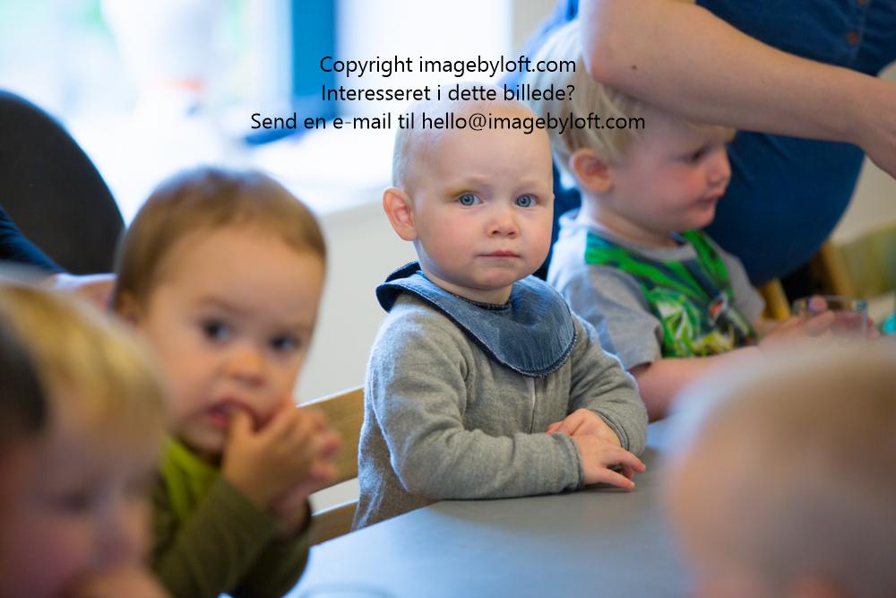imagebyloft.com-20150619-_5D30023.jpg