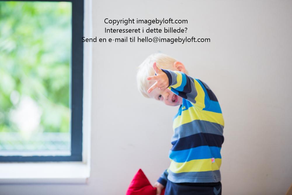 imagebyloft.com-20150619-_5D30200.jpg