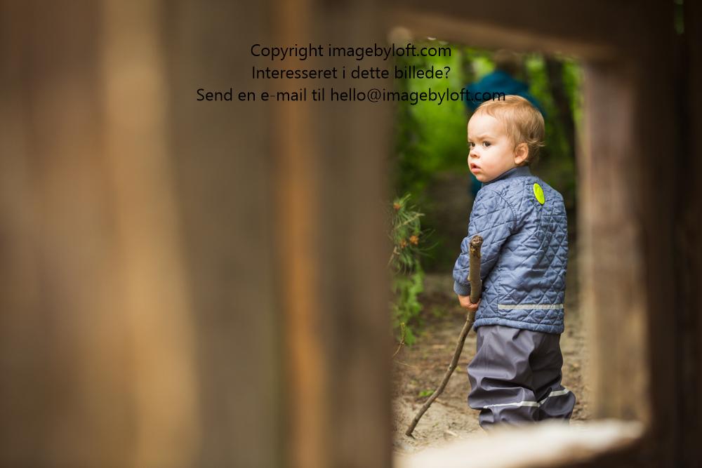 imagebyloft.com-20150619-_5D30527.jpg