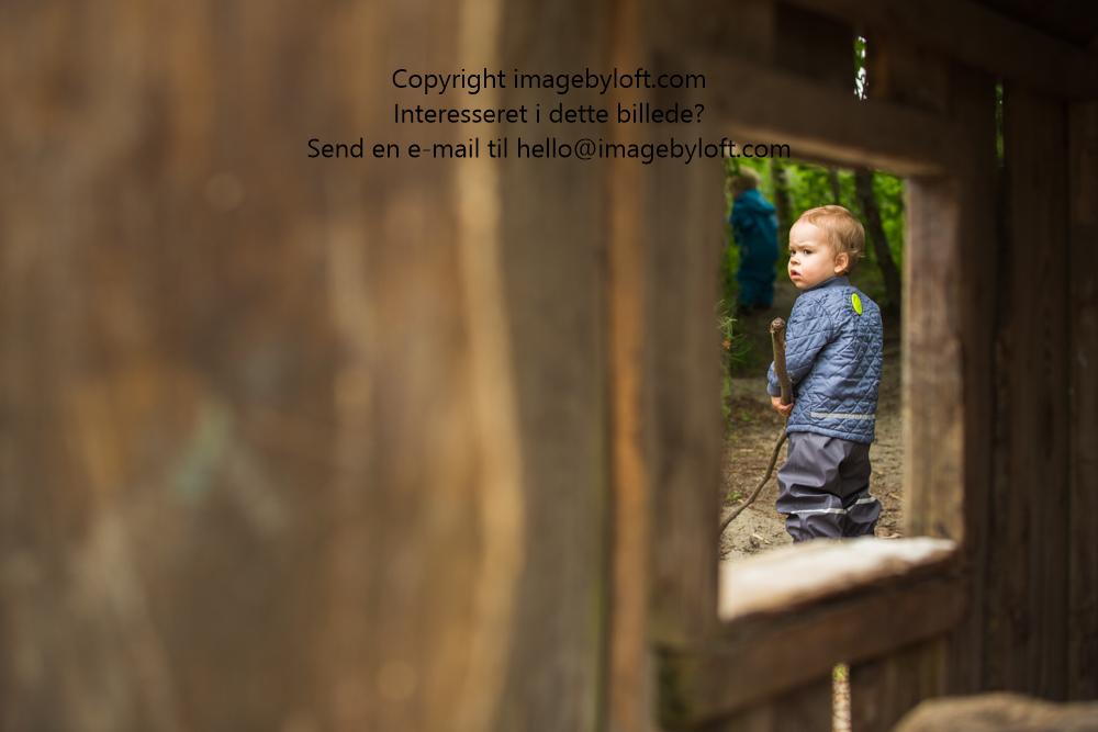 imagebyloft.com-20150619-_5D30529.jpg