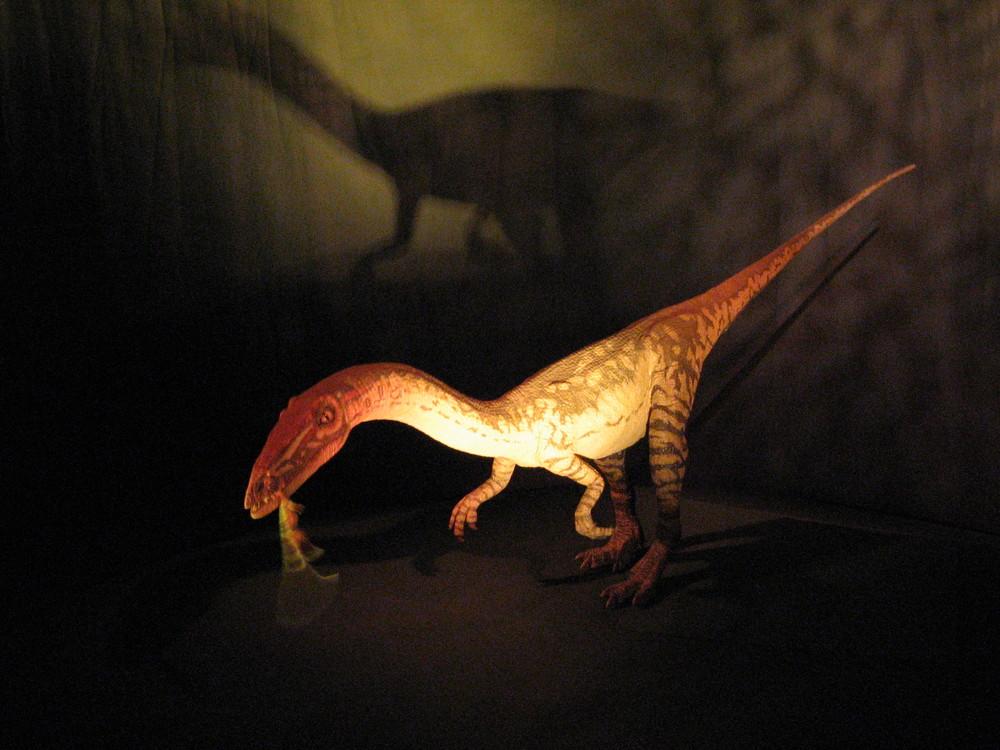 Dino Jaws (Natural History Museum)