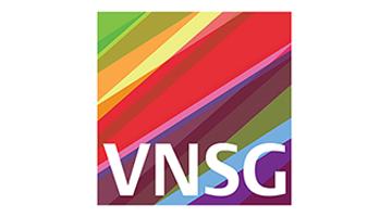 VNSG logo