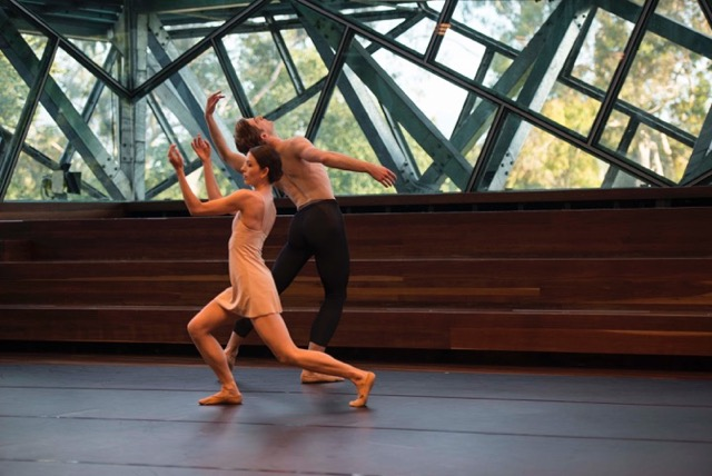 with Dominic Ballard in Tim Podesta's Alta Stare, Ballet Stars Under the Stars Gala 2016 at Federation Square, Melbourne