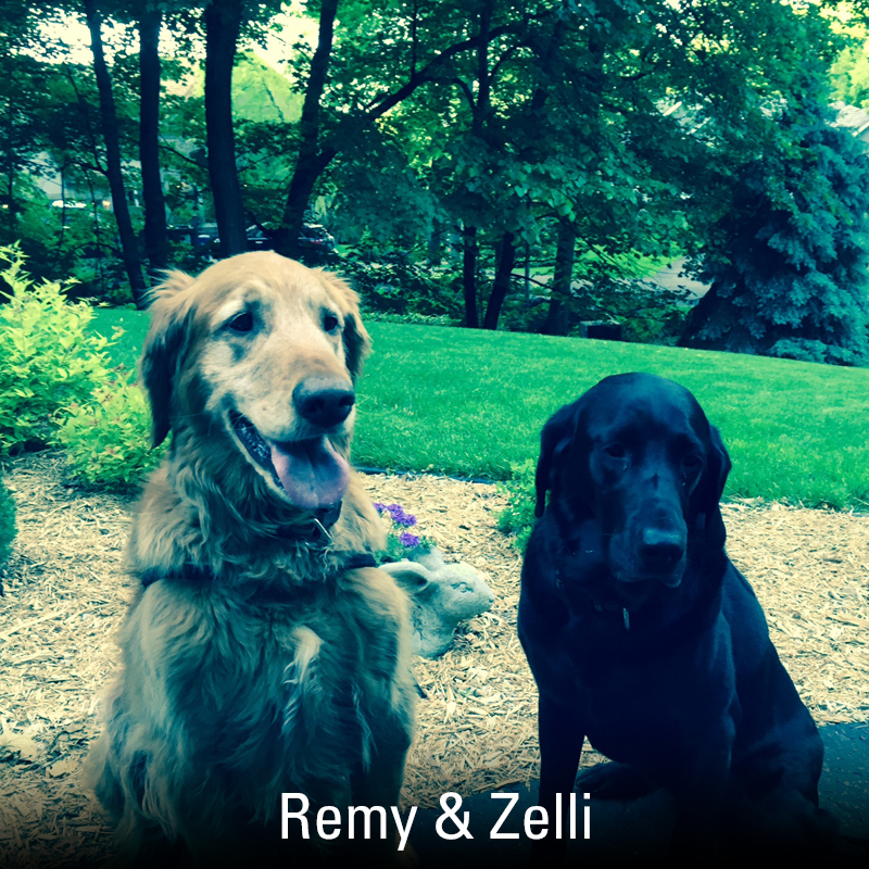 Remy-and-Zelli.jpg