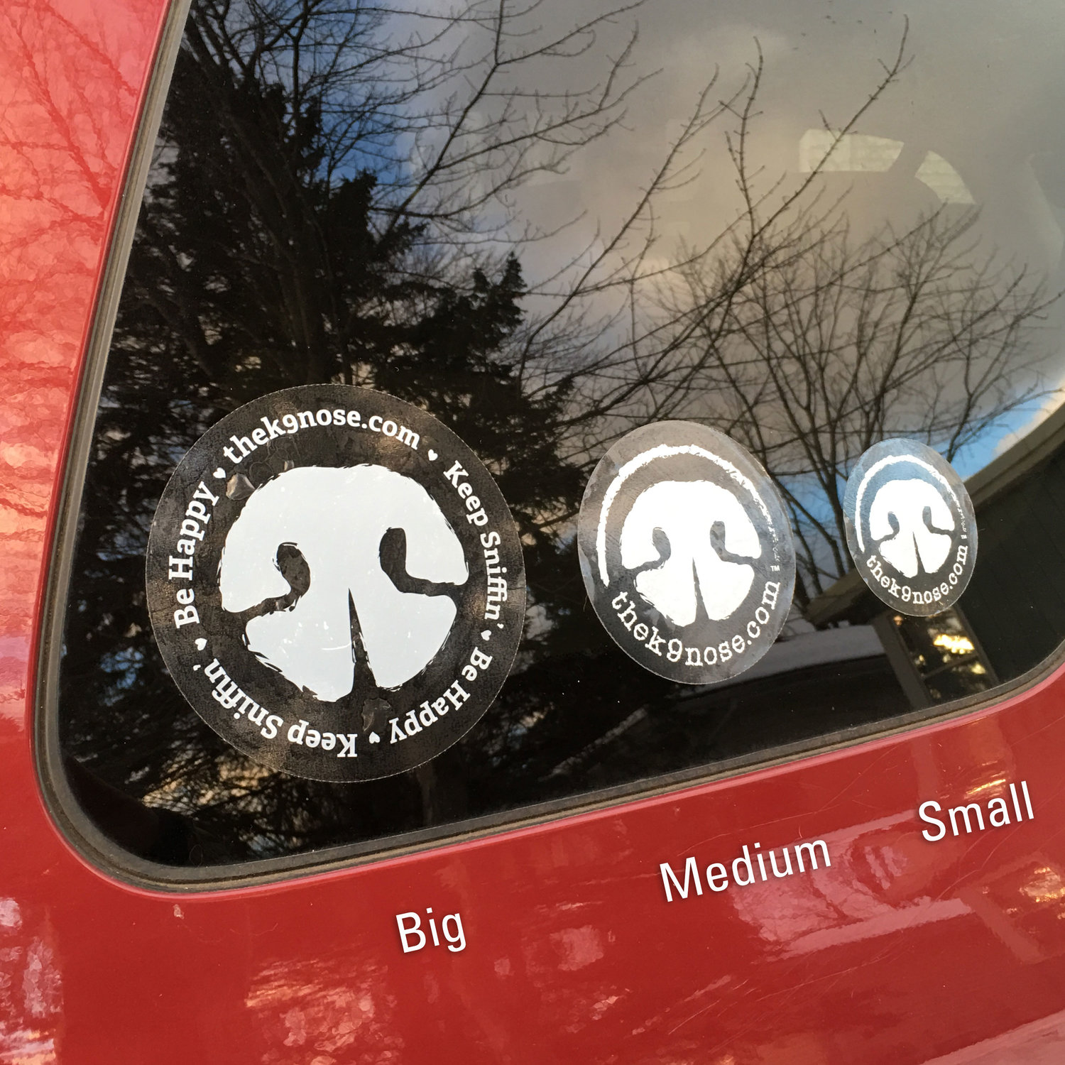 Car decals white ink on clear vinyl adhesive the k9 nose