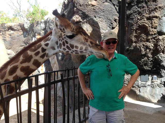 The giraffe giving Toby some love.