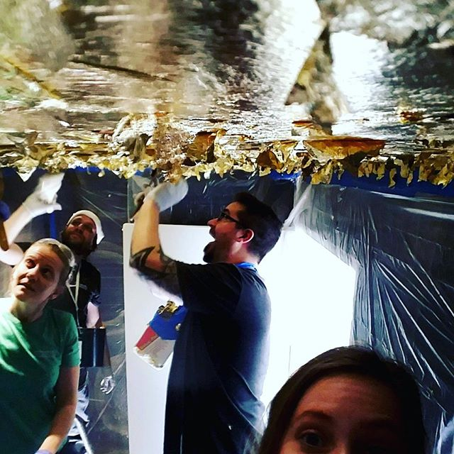 Gold leaf ceiling in full effect! This powder room is going to be gorgeous! #goldleaf #anythingbutplain
