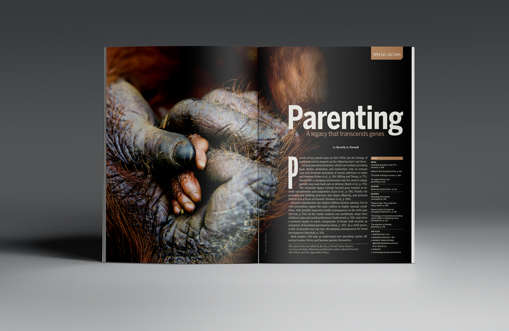 Parenting Special Issue