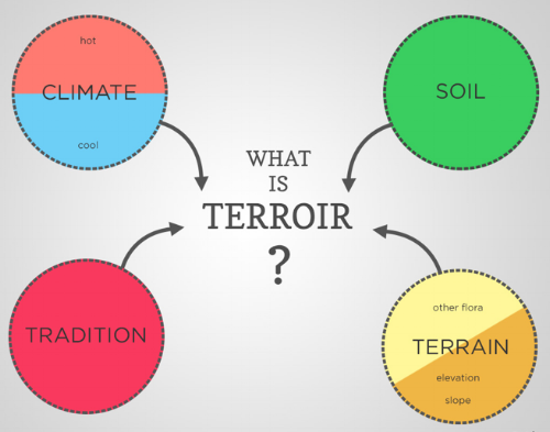 Terroir Diagram.png