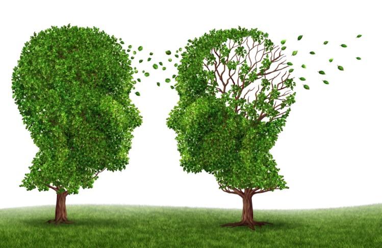 Could-folic-acid-decrease-dementia-risk_wrbm_large.jpg