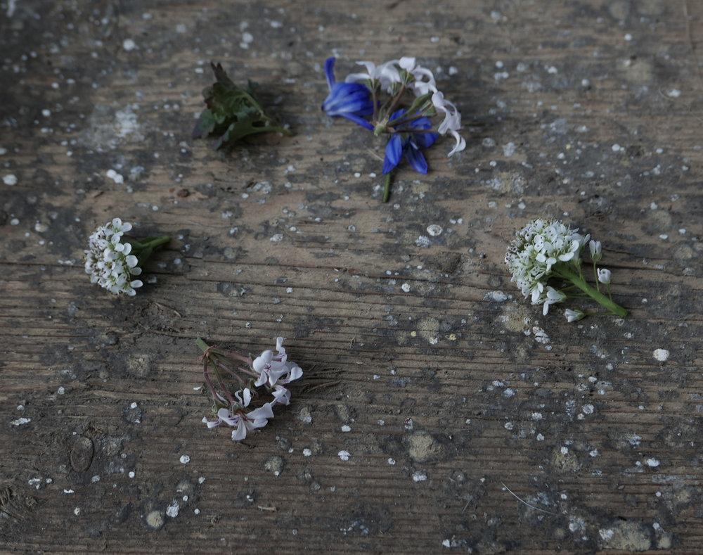 slowdesign_flowers2.jpg
