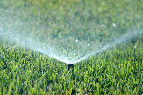 Follow These Lawn Watering Tips from Earth First Landscapes in Katy, Texas for a healthy lawn!