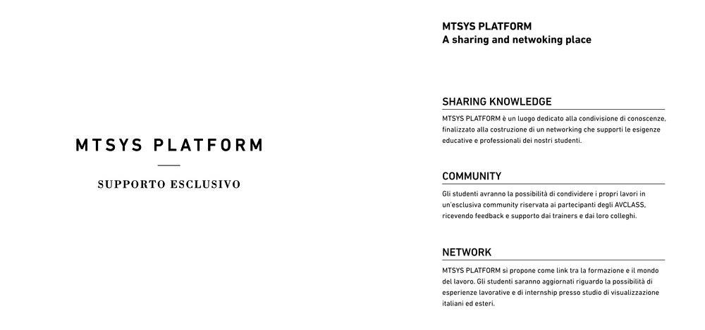 mtsys platform.jpg