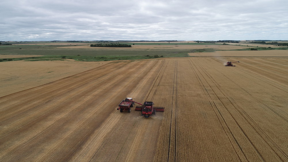 Combines And Cart.JPG