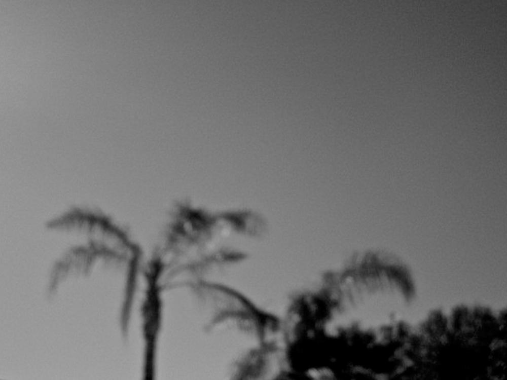 Untitled 04, Backyard Blues.jpg