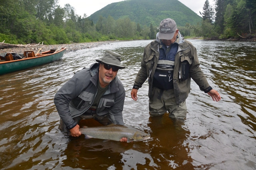 Salmon Lodge regular Gaetan Joly puts a nice one back on the Grand. Nice fish Gaetan!