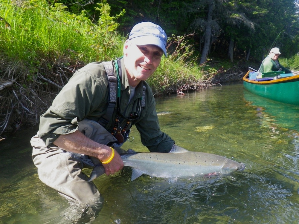 ASF President Bill Taylor releases a nice one back in the Bonaventure, Congratulations Bill!