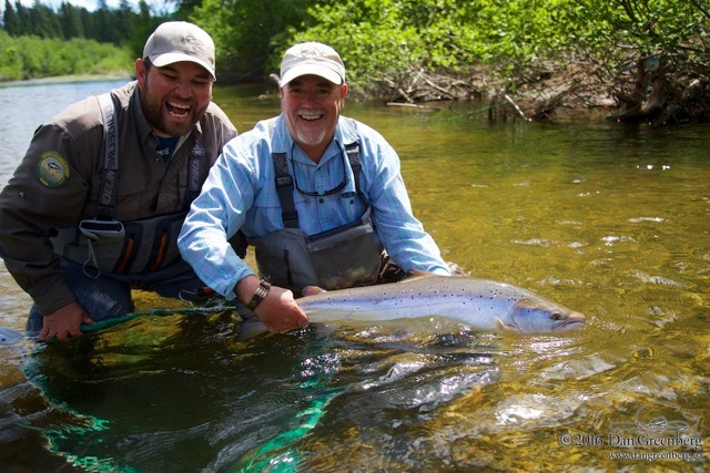 Jim Lawley lands a nice on on the Grand Cascapedia, Nice fish Jim!